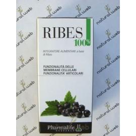 Pharmalife Ribes 100%