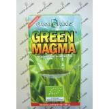 Royal Green GREEN MAGMA  Polvere 150 gr - Disintossicante e Antiossidante