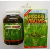 Royal Green GREEN MAGMA 320 Compresse - Disintossicante E Antiossidante | NATURALWEB